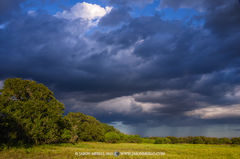 San Saba County, Texas Cross Timbers, Texas Hill Country, rain