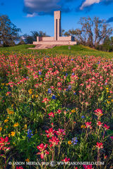 2015032203, Wildflowers and monument