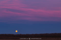 San Saba County, Texas Cross Timbers, Texas Hill Country, moon, moonrise
