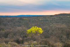 San Saba County, Texas Cross Timbers, Texas Hill Country