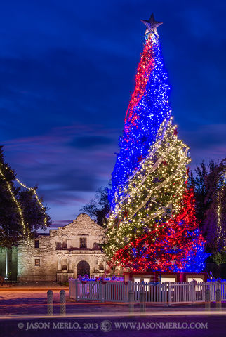 Mission San Antonio de Valero, The Alamo, San Antonio, South Texas, Texas Revolution, Christmas, tree