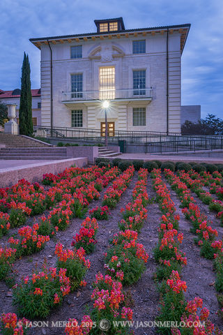 Austin, University of Texas, campus, snapdragons, Benedict Hall, Six Pack