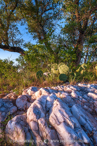 Enchanted Rock State Natural Area, state park, Texas Hill Country, Llano, Fredericksburg, Llano County, Gillespie County, Llano Uplift, quartz