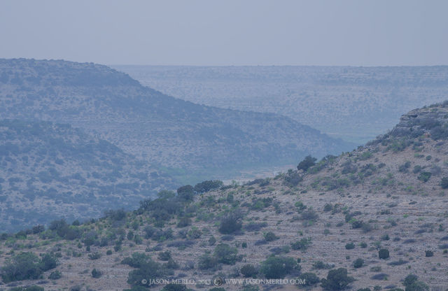 Independence Creek Preserve, The Nature Conservancy, Terrell County, West Texas, Chihuahuan Desert