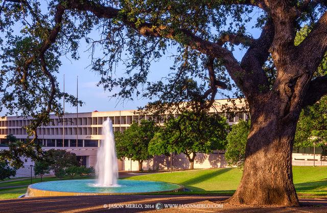 Austin, University of Texas, campus, Sid Richardson Hall, LBJ Fountain, live oak, tree, Quercus virginiana