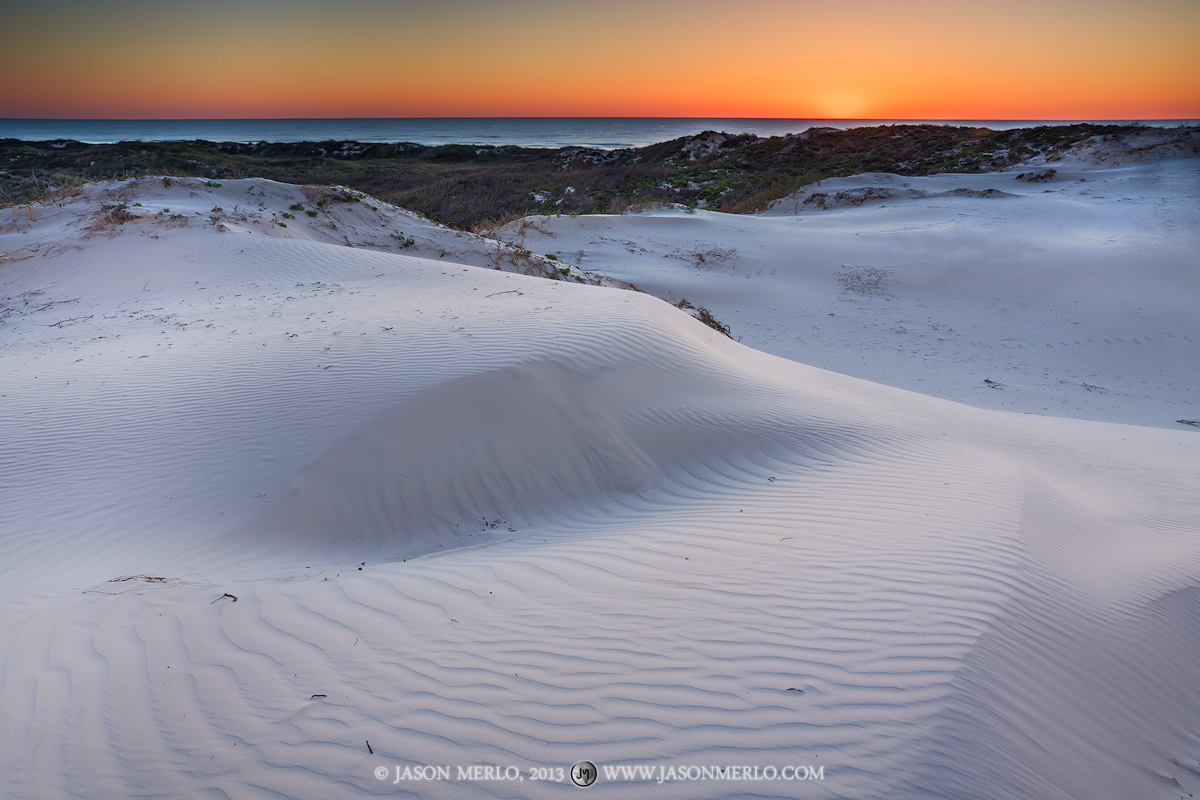 Padre Island National Seashore, Texas, Kleberg County, Gulf Coast, Gulf of Mexico, Malaquite Beach, beach, foredunes, photo