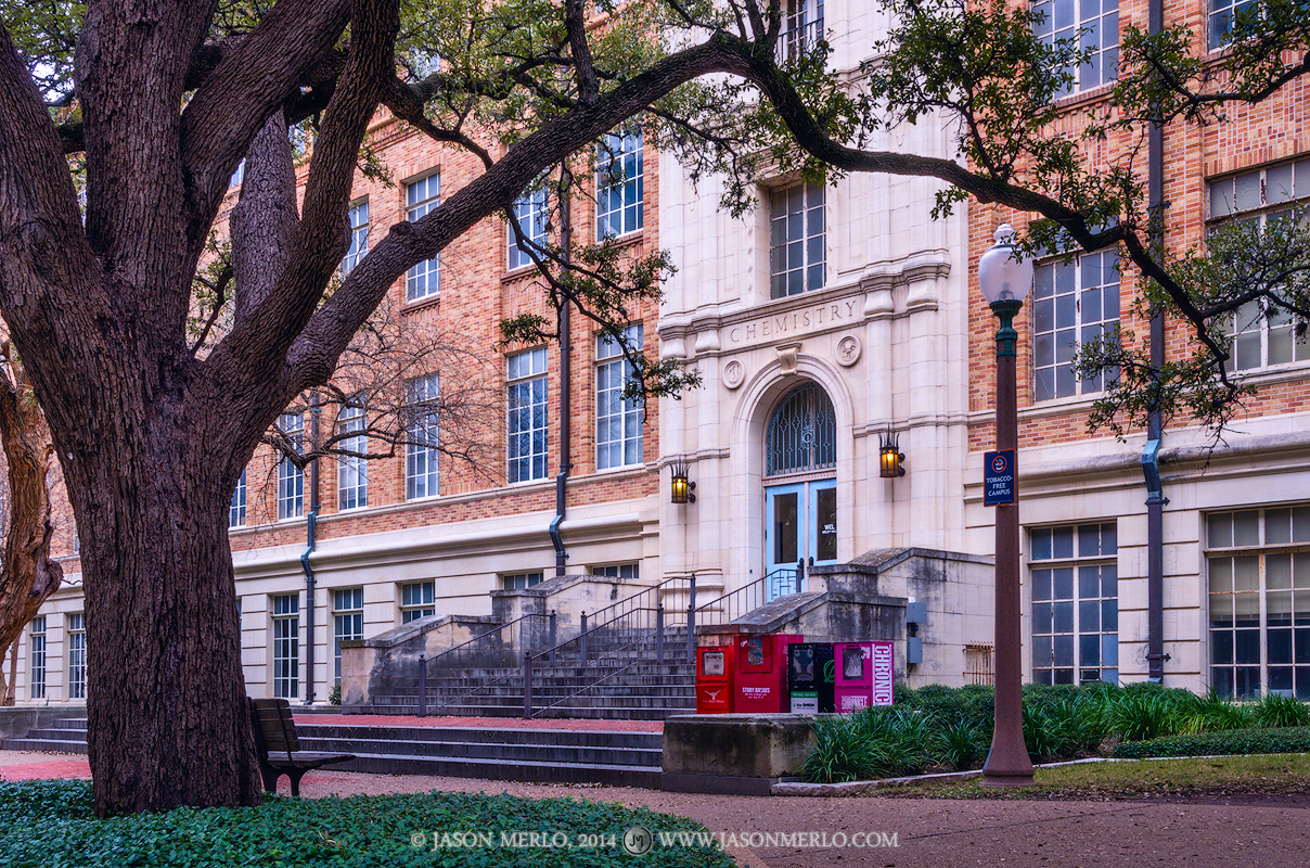 The entrance to Robert A. Welch Hall framed by a live oak tree (Quercus virginiana) at the University of Texas in Austin...