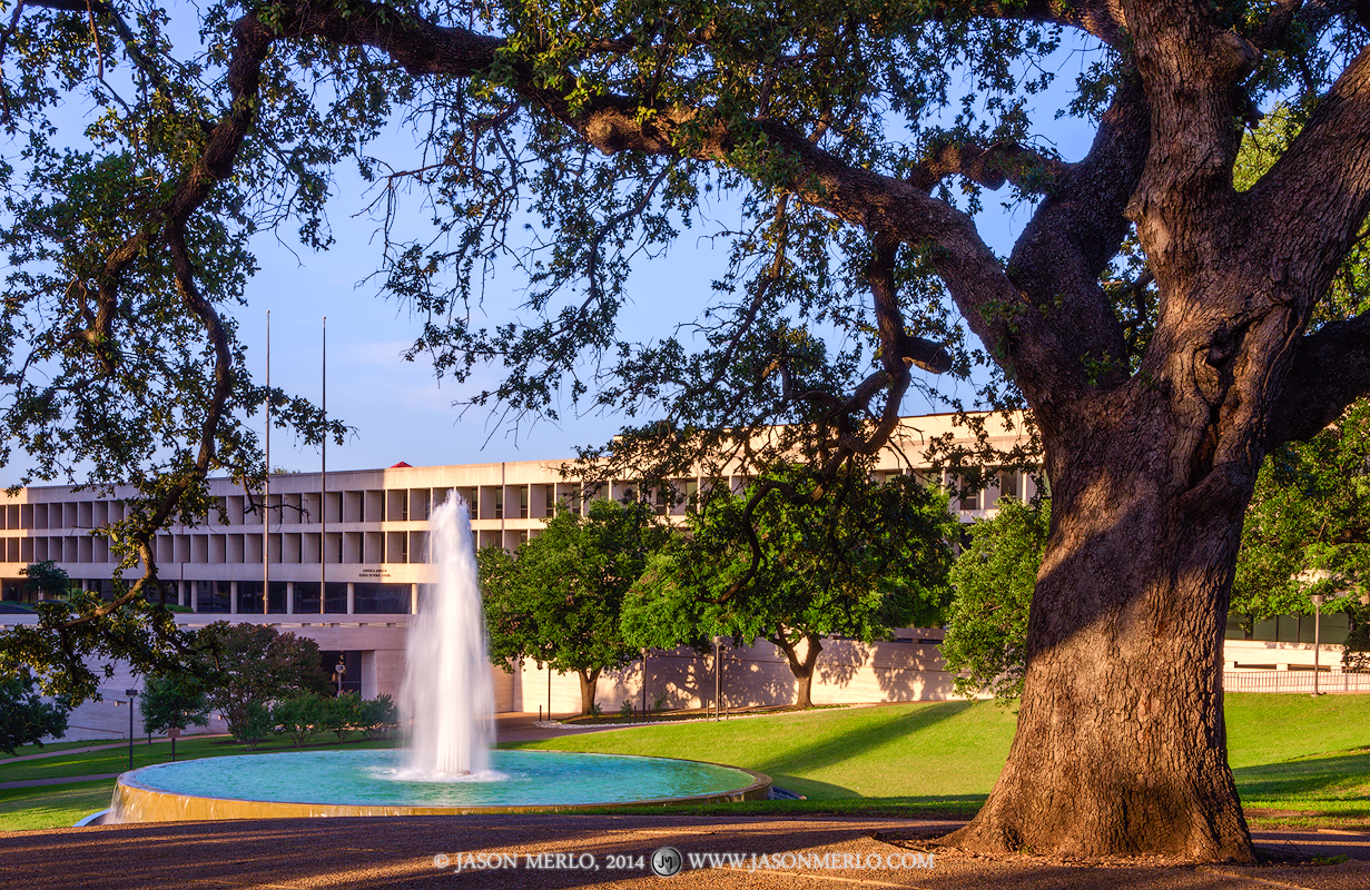 Austin, University of Texas, campus, Sid Richardson Hall, LBJ Fountain, live oak, tree, Quercus virginiana, photo