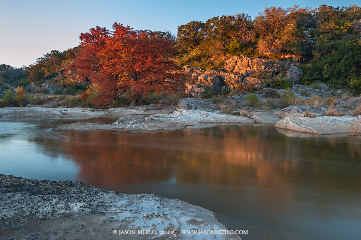 Pedernales Falls State Park, Texas Hill Country, Blanco County, Johnson City, Dripping Springs, Pedernales River, cypress, trees,  Taxodium distichum, fall color, photo