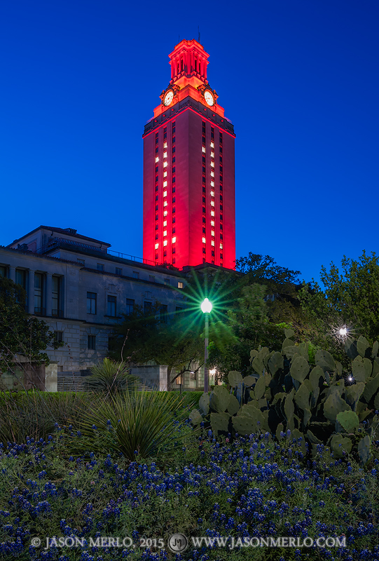 The Tower lit orange with a number 1 for the 2015 Swimming and Diving national championship and a planter with Texas bluebonnets...
