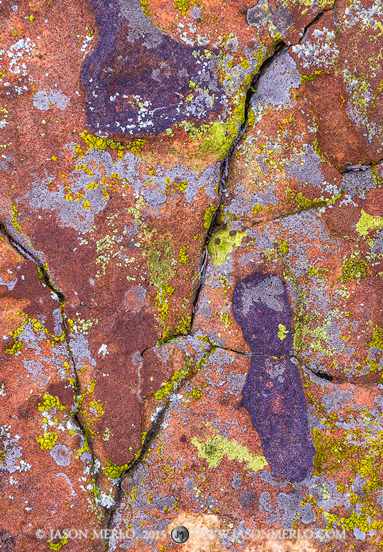 San Saba County, Texas Cross Timbers, Texas Hill Country, lichen, sandstone, photo