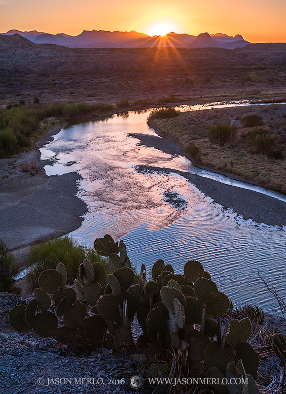 Big Bend National Park, Brewster County, West Texas, Chihuahuan Desert, Rio Grande, river, prickly pear, cactus, Opuntia rufida, sunrise, Chisos Mountains, photo