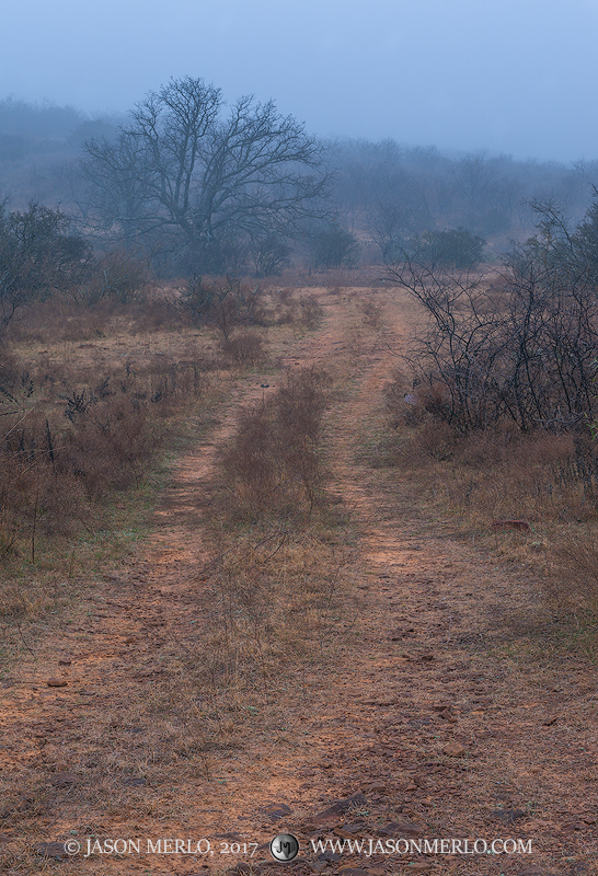 San Saba County, Texas Cross Timbers, Texas Hill Country, fog, ranch road, photo