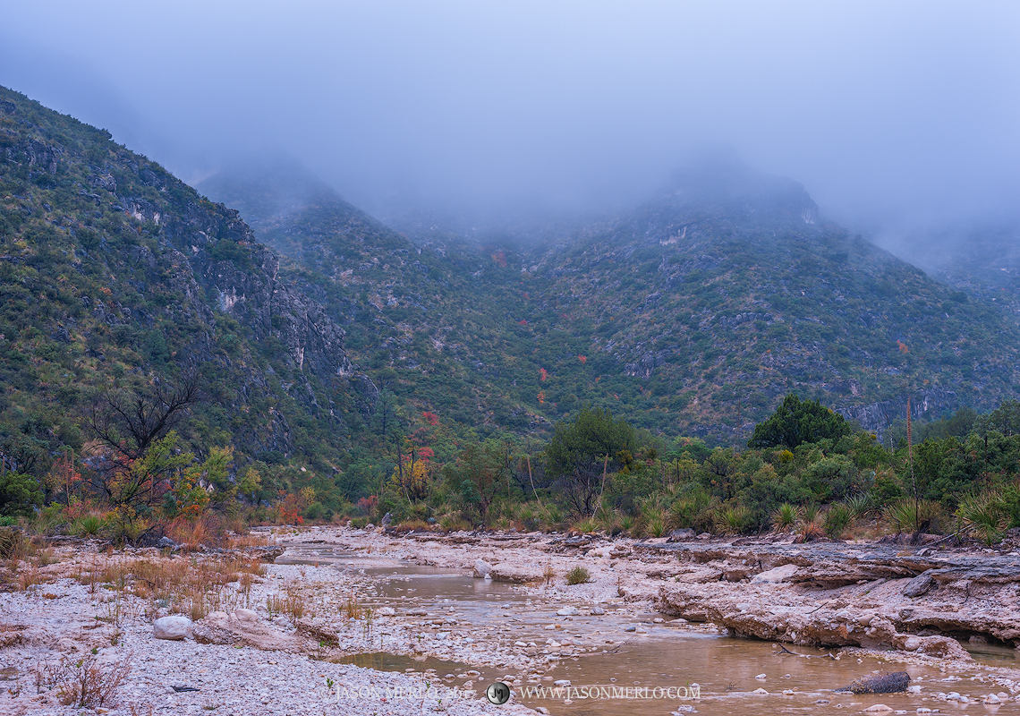 Guadalupe Mountains National Park, West Texas, Culberson County, Chihuahuan Desert, McKittrick Canyon, McKittrick Creek, fog, photo