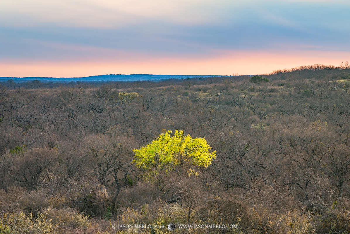 San Saba County, Texas Cross Timbers, Texas Hill Country, photo