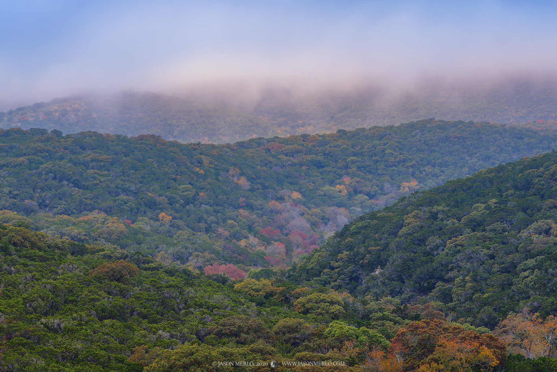 Fog covered hills dotted with fall foliage in Real County, Texas.